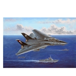 Hobbyboss 1/48 80367 F-14B Tomcat Aircraft model kit