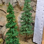 "6"" Moose Creek Evergreen Trees 10 pack"